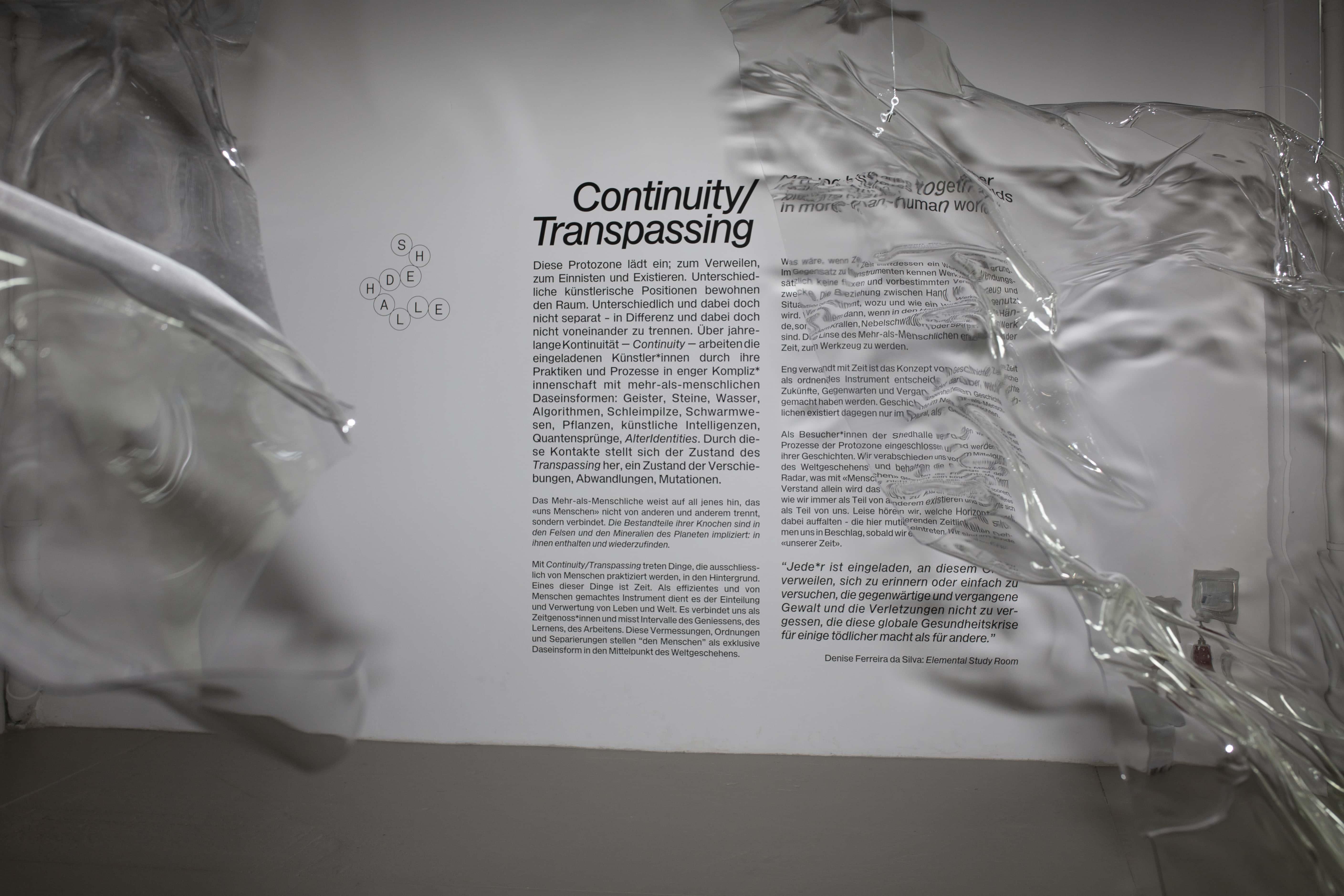 Shedhalle – Protozone2 Continuity/Transpassing
